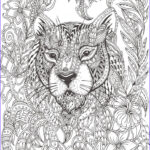 Adult Coloring Book Patterns Luxury Stock Best 25 Pattern Coloring Pages Ideas On Pinterest