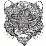Anti Stress Coloring Book Best Of Collection Bestiaire Extraordinaire 100 Coloriages Anti Stress