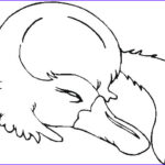 Australia Coloring Pages Luxury Image Australian Animals Colouring Pages