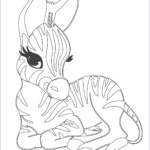 Baby Animal Coloring Pages Luxury Photos Cute Baby Zebra Coloring Page