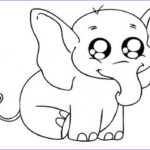 Baby Animal Coloring Pages New Stock Baby Animal Coloring Pages Bestofcoloring