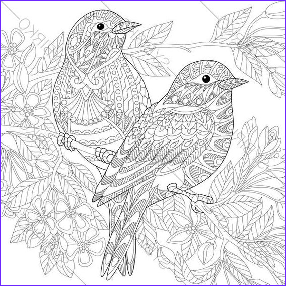 Bird Coloring Pages for Adults New Collection Adult Coloring Pages Sparrow Birds Zentangle Doodle Coloring