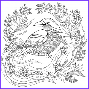 Bird Coloring Pages for Adults New Photos Birds Coloring Pages for Adults