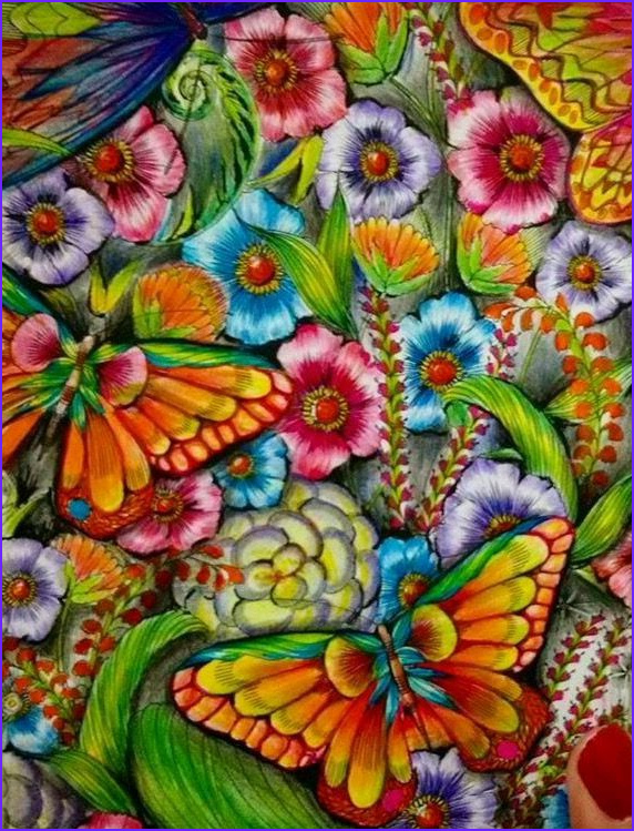Bright bold and beautiful Kleur