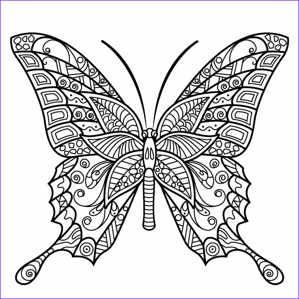 Butterfly Coloring Book for Adults Cool Image Pin by Diana Kostak On Color Me Happy