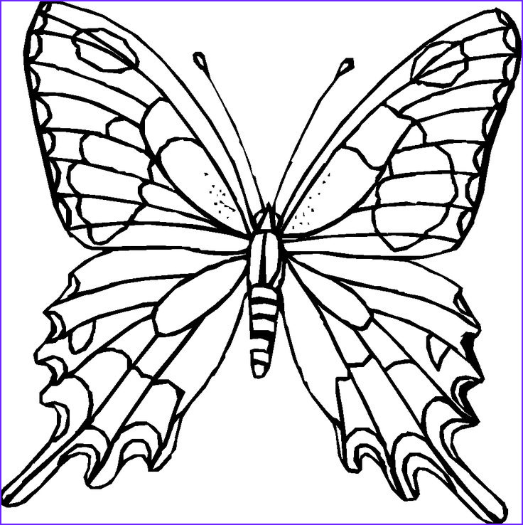 Butterfly Coloring Book for Adults New Photos Difficult Coloring Pages for Adults