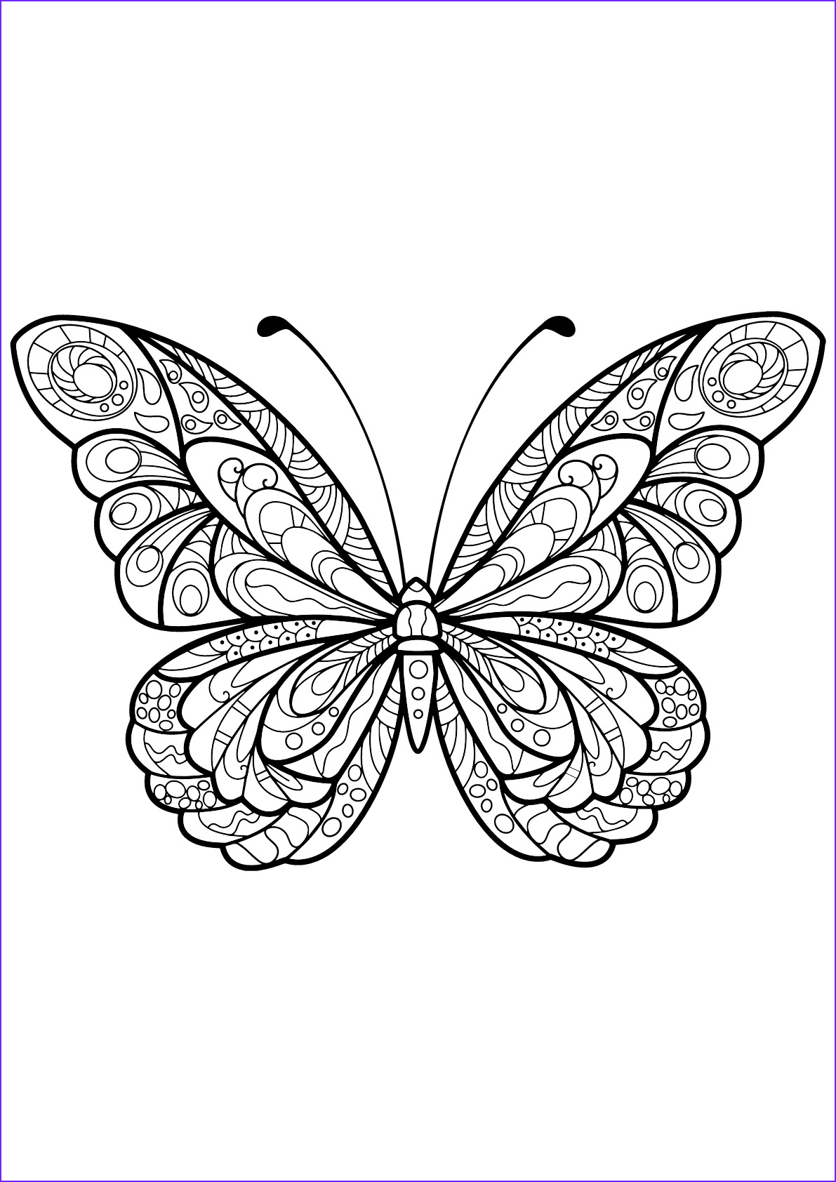 Butterfly Coloring Book for Adults New Stock butterfly Beautiful Patterns 5 butterflies & Insects