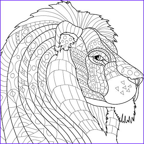 Animal Kingdom Adult Coloring Book Set With Colored