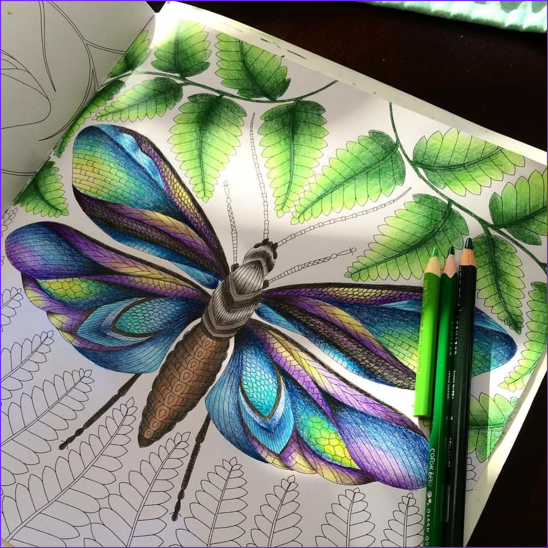 Tropical World Coloring Book Inspiration