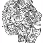 Coloring Book Animals New Photography Animal Coloring Pages Pdf Coloring Animals