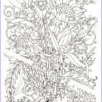 Coloring Books Adults Awesome Photos Free Coloring Pages For Adults