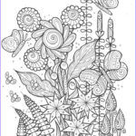 Coloring Books Adults Beautiful Stock Butterflies And Bees Adult Coloring Page