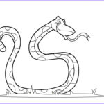 Coloring Books For Kids Cool Gallery Free Printable Snake Coloring Pages For Kids