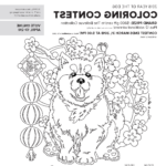 Coloring Contest Elegant Photography Lucky You Insider S Guide To Lunar New Year Festivals