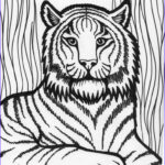 Coloring Pages For Free Inspirational Images Free Printable Tiger Coloring Pages For Kids