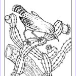 Coloring Pages For Free New Collection Free Printable Cactus Coloring Pages For Kids