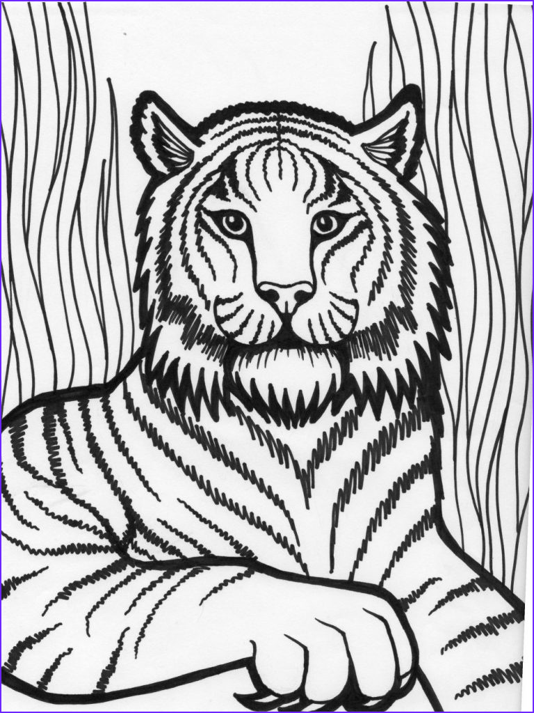 Coloring Pages for Kids Free Beautiful Collection Free Printable Tiger Coloring Pages for Kids