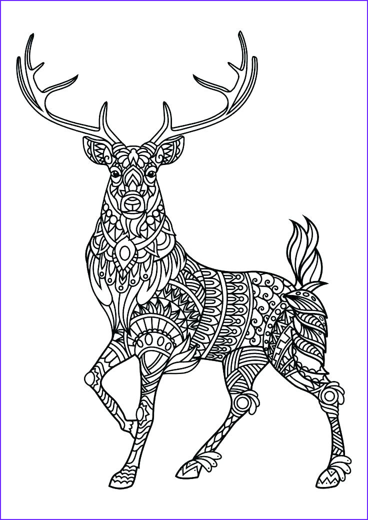 Coloring Pages Of Animals Luxury Gallery Animal Mandala Coloring Pages Best Coloring Pages for Kids