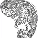 Coloring Pages Of Animals Unique Photos Animal Coloring Pages Pdf Coloring Animals