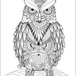 Coloring Pages to Print for Adults Elegant Collection Owl Coloring Pages for Adults Free Detailed Owl Coloring
