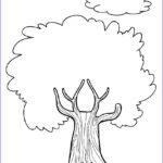 Coloring Pages Unique Photography Free Printable Tree Coloring Pages For Kids