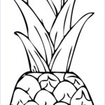 Coloring Paper Printable Elegant Image Free Printable Pineapple Coloring Pages For Kids