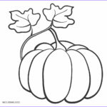 Coloring Pumpkins New Gallery Free Printable Pumpkin Coloring Pages For Kids
