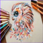 Cool Coloring Pencils Beautiful Photos 40 Creative And Simple Color Pencil Drawings Ideas