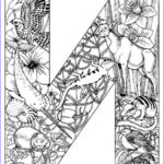 Detailed Coloring Books Inspirational Stock Very Detailed Coloring Pages Coloringsuite