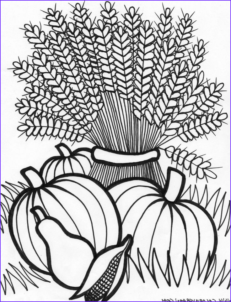 Fall Coloring Sheet Beautiful Stock Best 25 Fall Coloring Pages Ideas On Pinterest