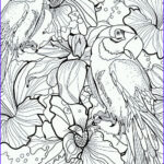 Fantasy Coloring Books For Adults Luxury Photos Final Fantasy 7 Coloring Pages Coloring Home