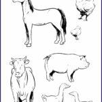 Farm Animals Coloring Pages Best Of Photos Baby Farm Animal Coloring Pages