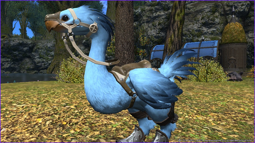 Ffxiv Chocobo Coloring Beautiful Photos Chocobo Color Screenshots No How to S Please Only