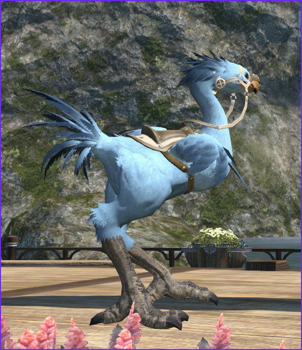 Ffxiv Chocobo Coloring Unique Image Chocobo Color Screenshots No How to S Please Only