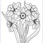 Flower Coloring Sheets Beautiful Image Free Printable Flower Coloring Pages For Kids