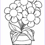 Flower Coloring Sheets Beautiful Photos Free Printable Flower Coloring Pages for Kids