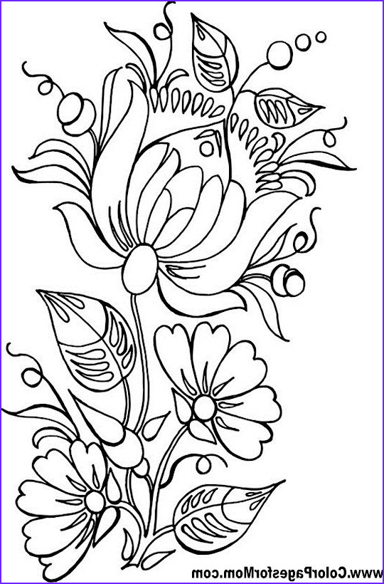 Flower Designs Coloring Book Beautiful Photos 25 Best Ideas About Flower Coloring Pages On Pinterest