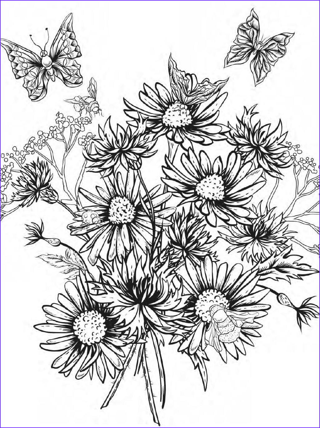 Flower Designs Coloring Book Best Of Gallery Beautiful Flowers Detailed Floral Designs Coloring Book