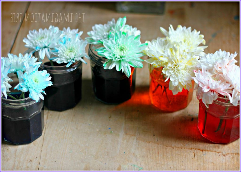 Food Coloring Flowers Beautiful Photos Holy Spirit Coloring Pages