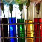 Food Coloring Science Projects Best Of Collection 12 Best Images About 5th Grade Science Fair Project On