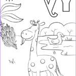Free Printable Coloring Pages For Preschoolers Luxury Photos Letter Y Is For Yellow Coloring Page