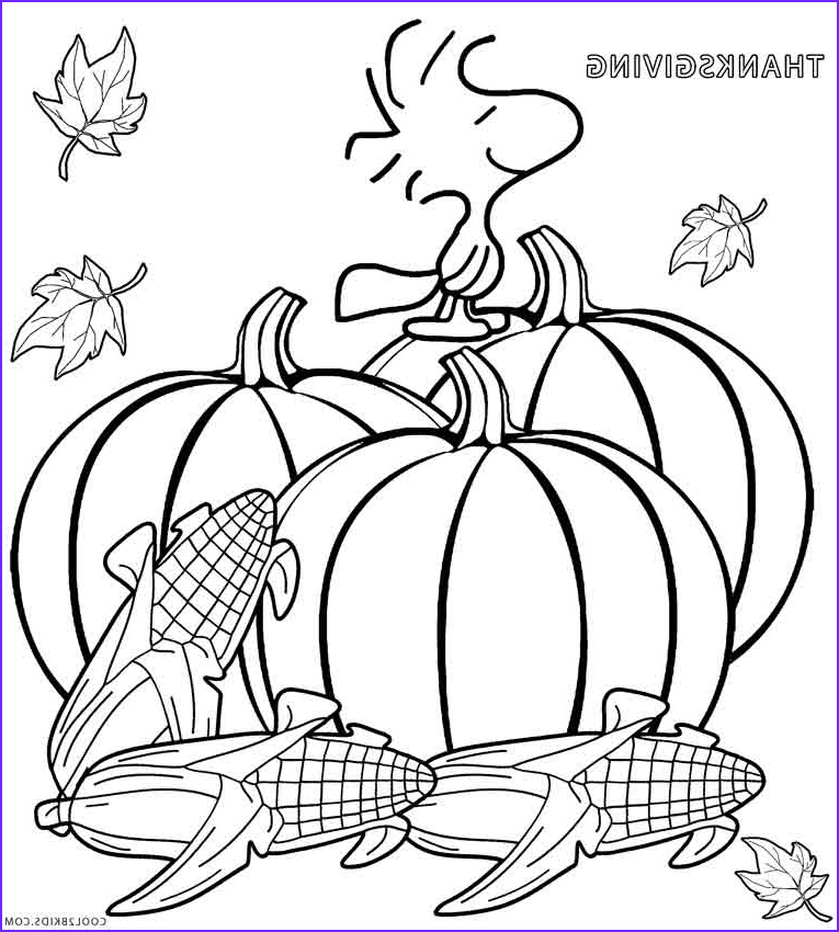 Free Printable Turkey Coloring Pages Awesome Stock Printable Thanksgiving Coloring Pages for Kids