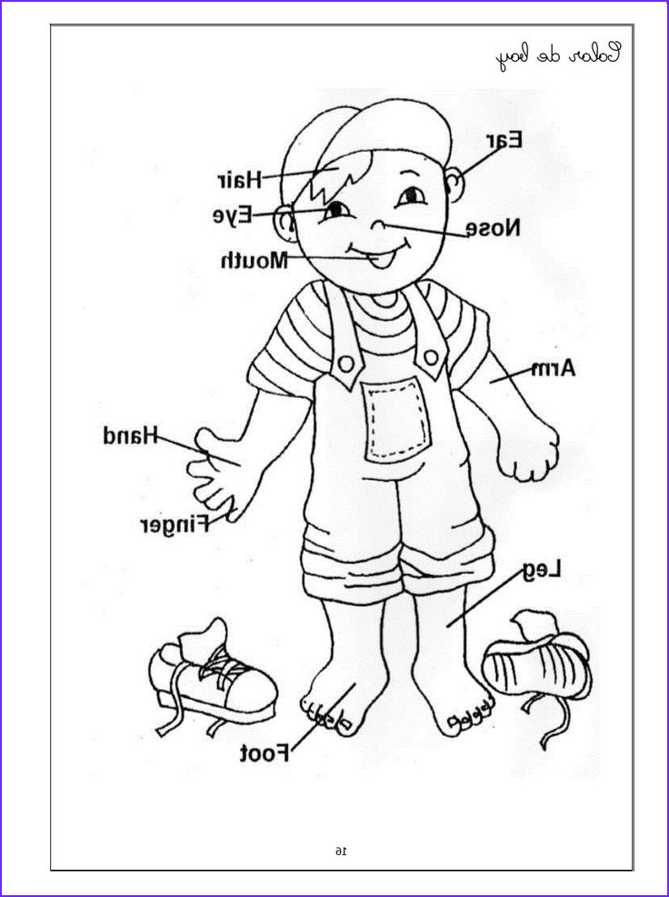 Fun Coloring Pictures Beautiful Gallery Witch Worksheets for Preschool
