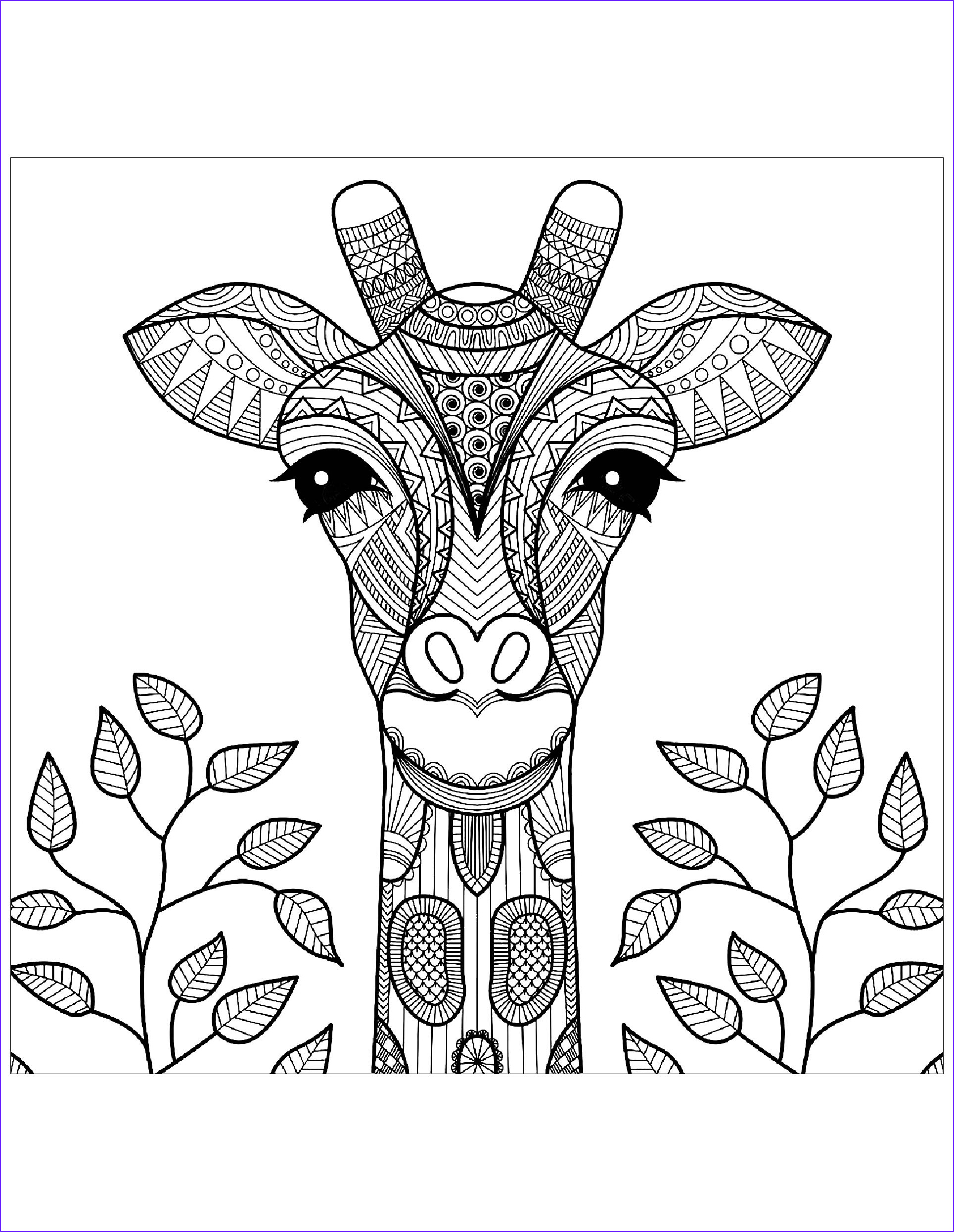 Girraffe Coloring Awesome Photography Giraffe Head with Leaves Giraffes Adult Coloring Pages
