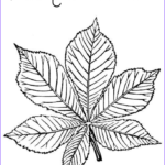 Green Coloring Pages Best Of Collection The Color Green Coloring Pages Az Coloring Pages