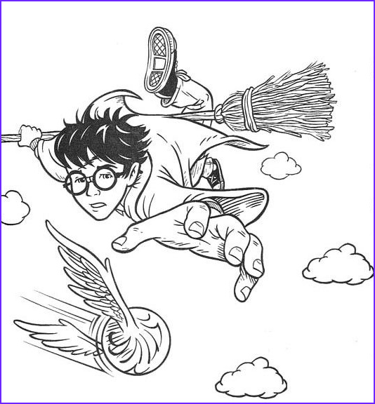 Harry Potter Coloring Pages Cool Gallery Free Harry Potter Coloring Pages Quidditch