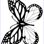 Monarch Butterfly Coloring Page Beautiful Photos Monarch Butterfly Drawing
