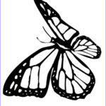 Monarch Butterfly Coloring Page Best Of Image Monarch Butterfly Coloring Pages Coloring Home