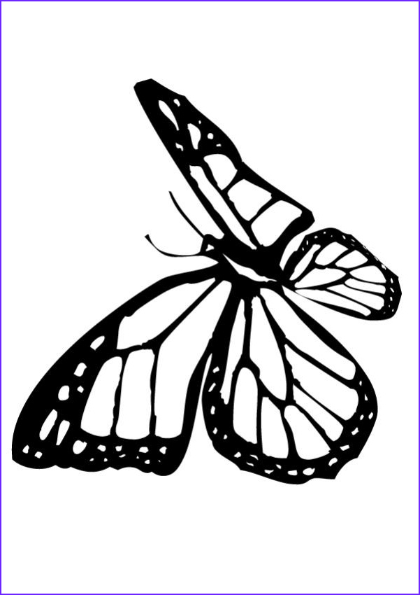 13 Awesome Monarch butterfly Coloring Page Stock