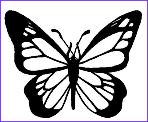 Monarch butterfly Coloring Page Best Of Photos Monarch butterfly Coloring Page & Coloring Book
